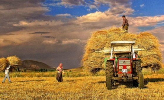 Çiftçi Fena Halde Dışlandı